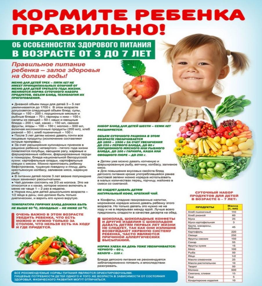 разговор о правильном питании. советы родителям